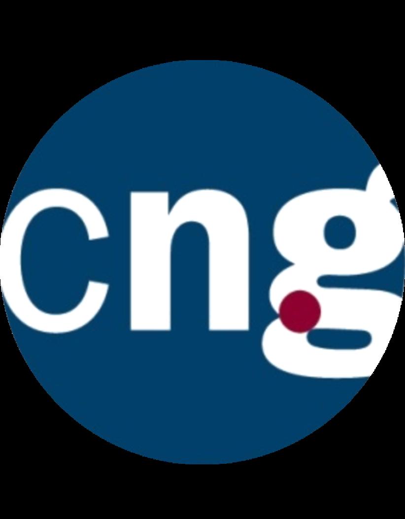 CNG Cabinet Guitard